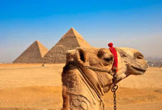 Pacchetto vacanze ad agosto? In Egitto a partire da 534 euro!