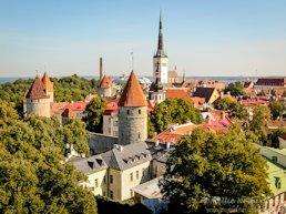 Turista nella città Tallinn – Stato Estonia – Ecco cosa visitare