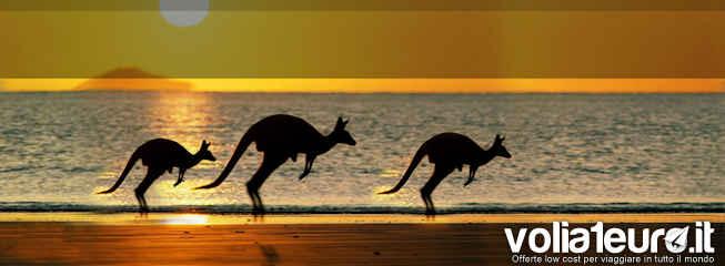 australia-qatar-airways