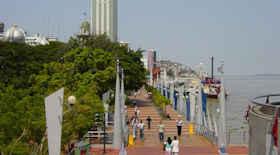 Turista nella città Guayaquil – Stato Ecuador – Ecco cosa visitare